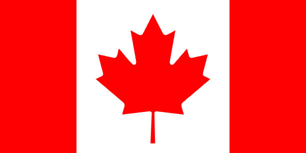 Flag of Canada Vector Flag of Canada Vector canada flag photos stock pictures, royalty-free photos & images