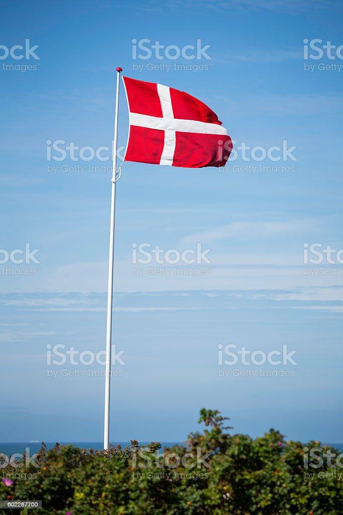 flag of Denmark waving on white pole against blue sky - foto de stock
