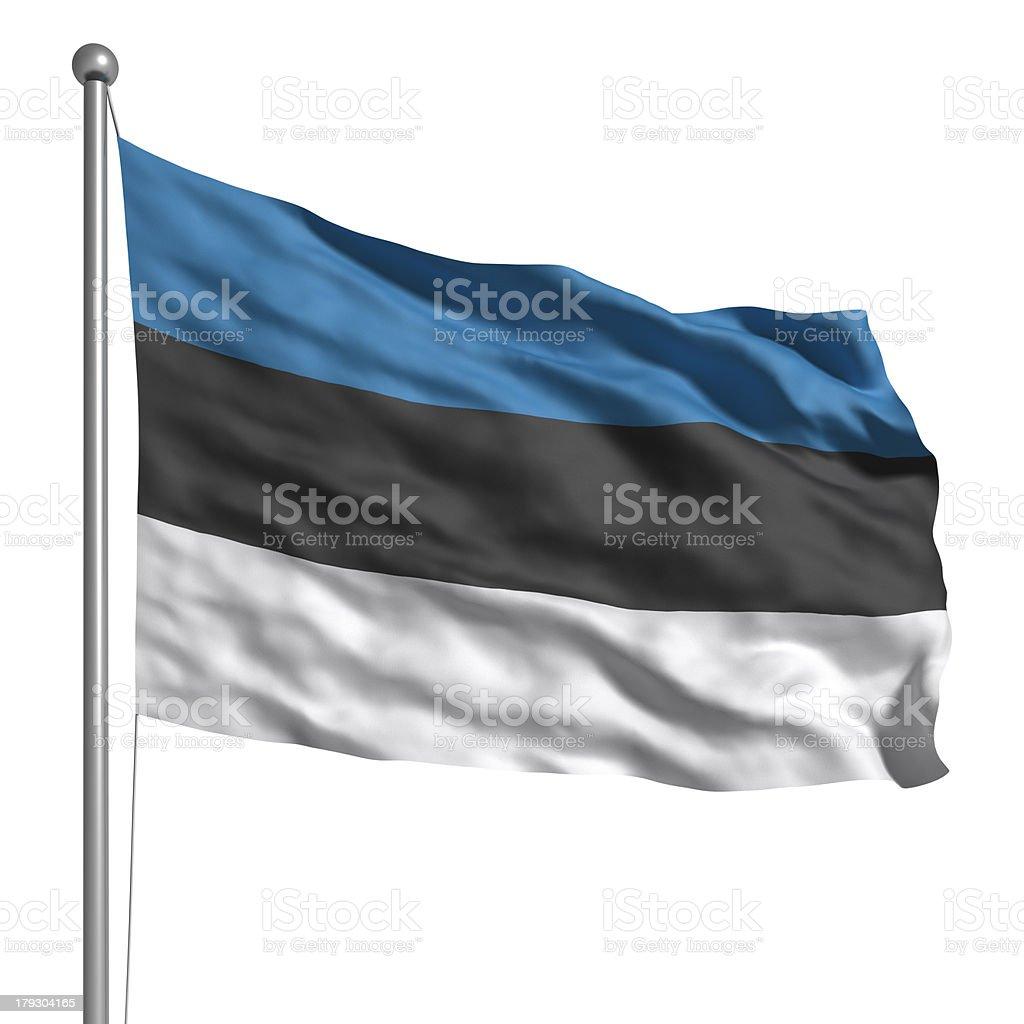 Flag of Estonia (Isolated) stock photo