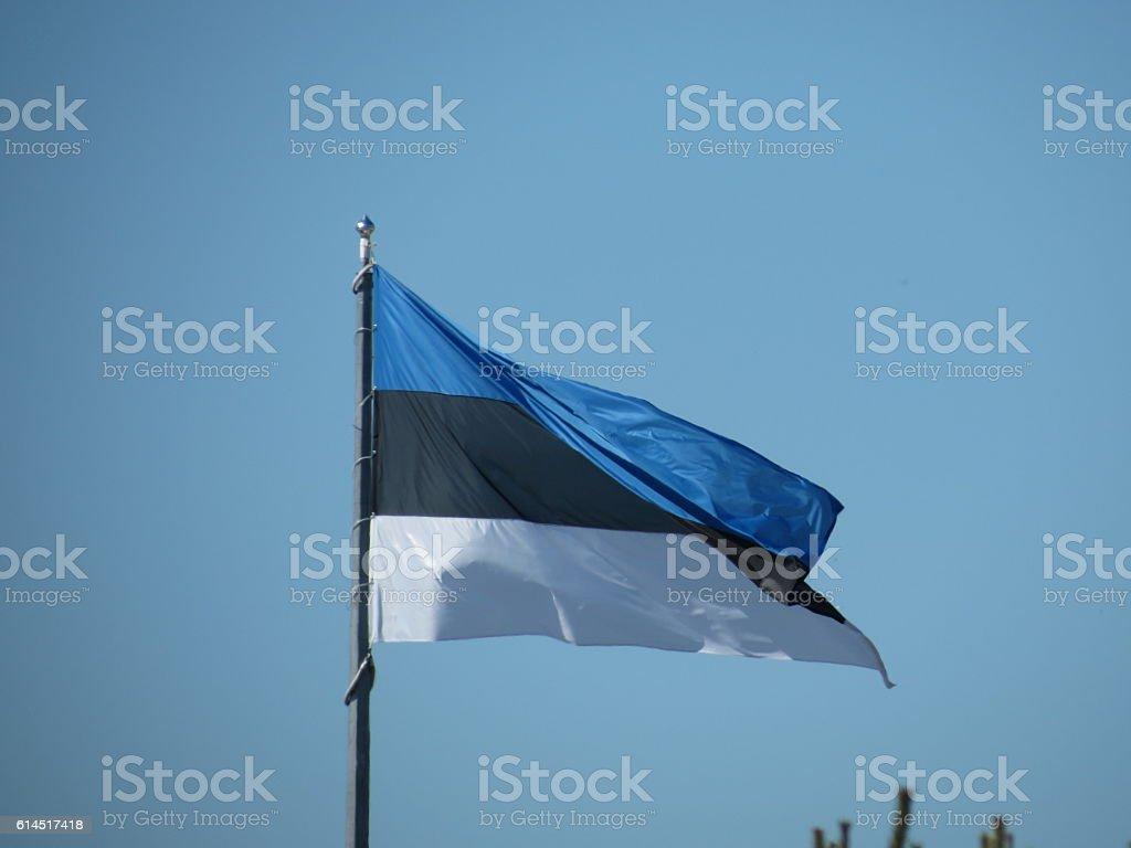 flag of Estonia stock photo