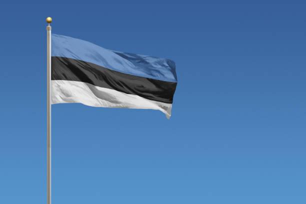 estonya bayrağı - estonya stok fotoğraflar ve resimler