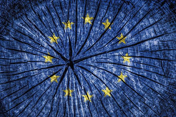 flag of  european union - detachment stock pictures, royalty-free photos & images