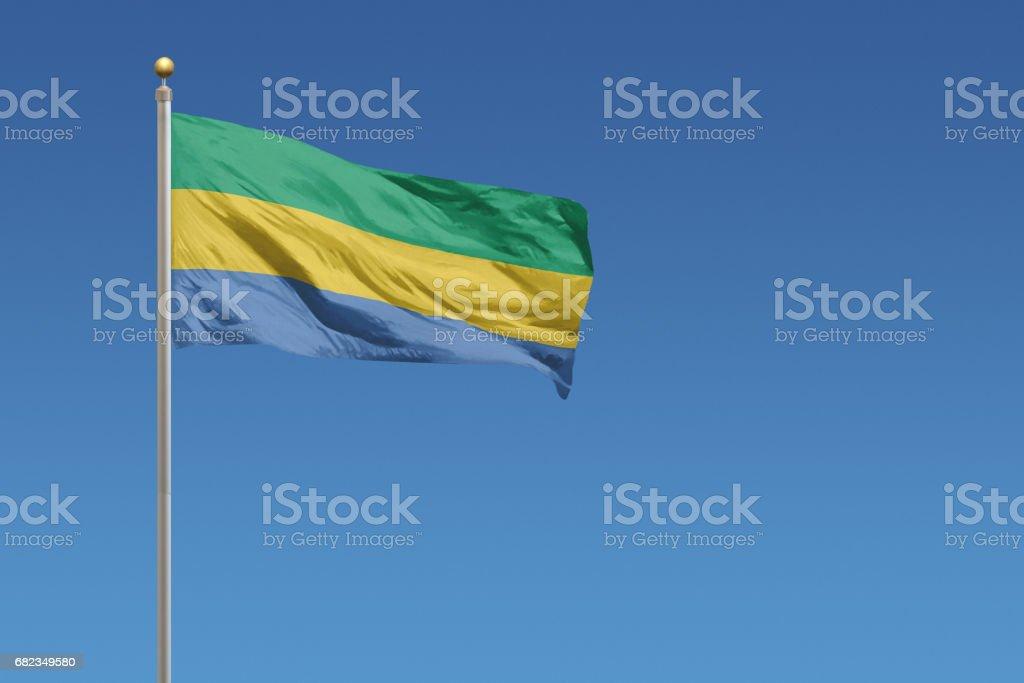 Flag of Gabon foto stock royalty-free