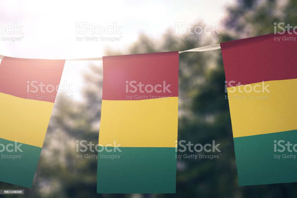 Flag of Guinea 免版稅 stock photo
