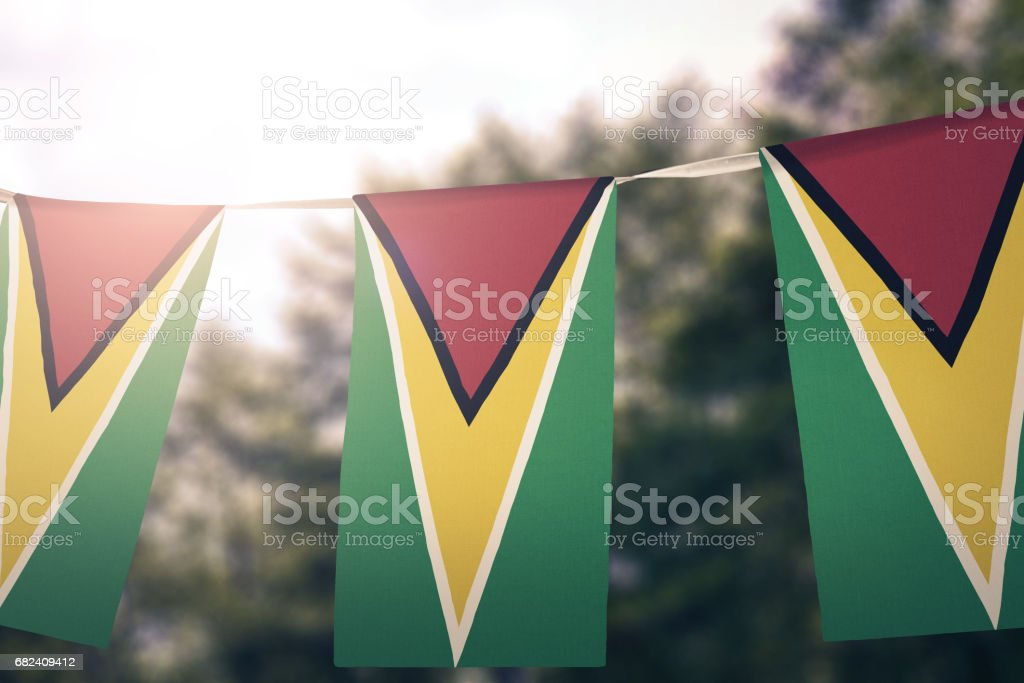 Flag of Guyana royalty-free stock photo