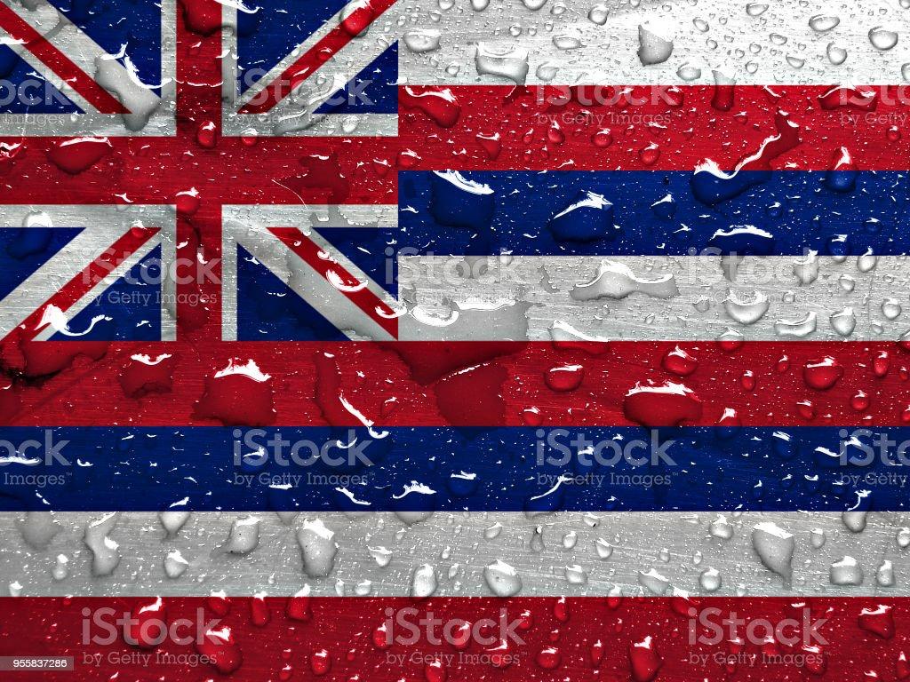 Bandeira de Havaí com chuva cai - foto de acervo