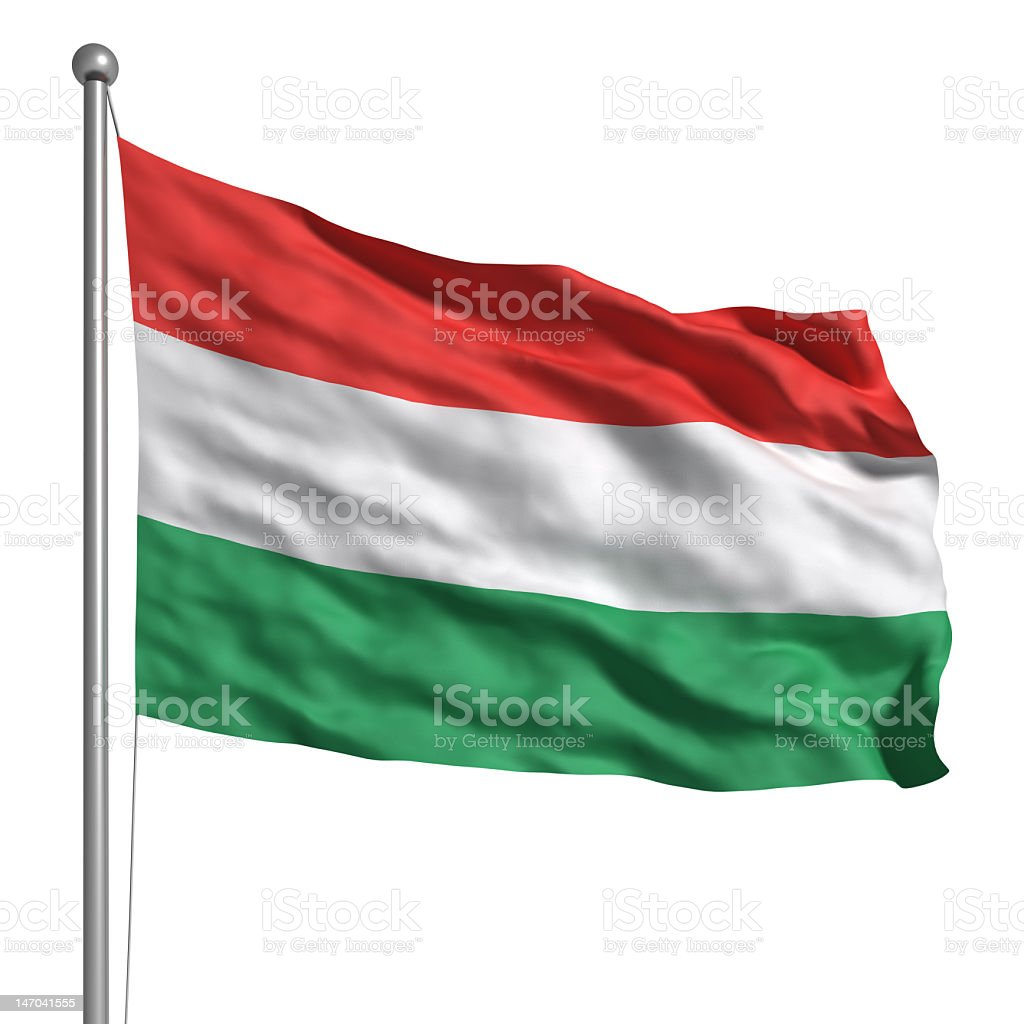 Flag of Hungary isolated on white background stock photo