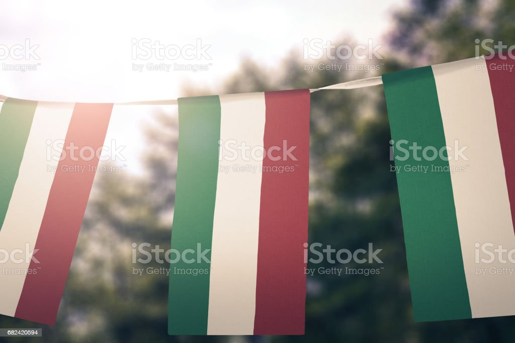 Flag of Hungary royalty-free stock photo
