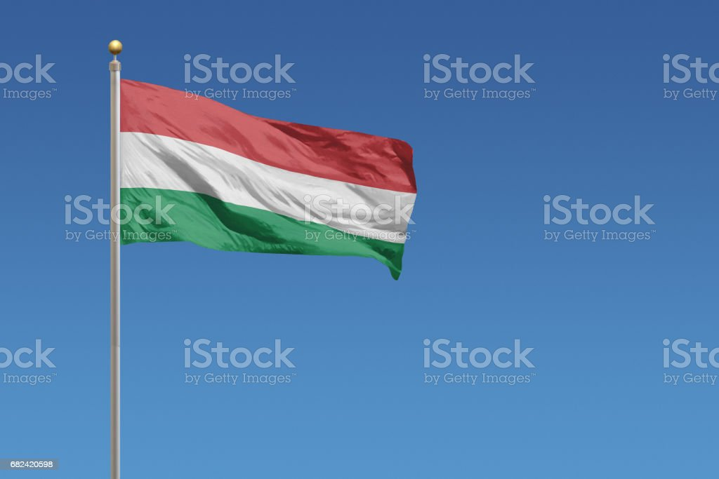 Flag of Hungary Lizenzfreies stock-foto