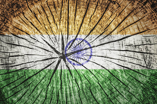 flag of india - detachment stock pictures, royalty-free photos & images