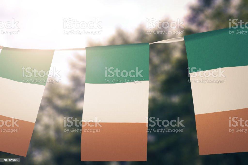 Flag of Ireland royalty-free stock photo