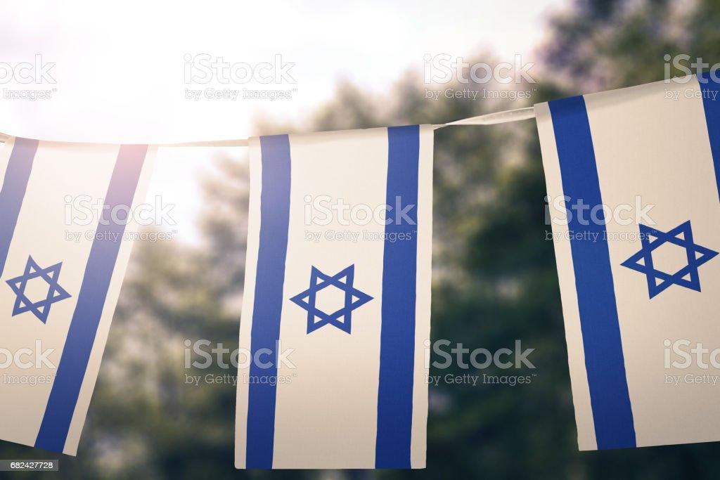 Flag of Israel photo libre de droits