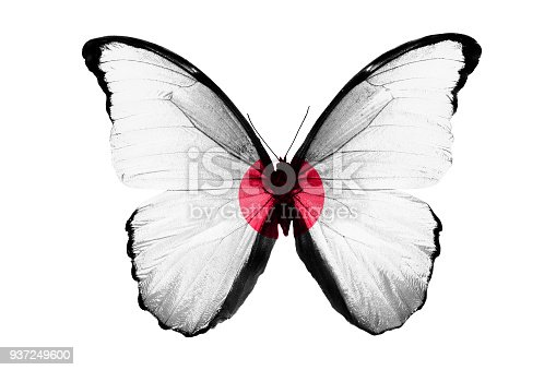 999676880 istock photo Flag of Japan on the wings of a butterfly, isolated on white background 937249600