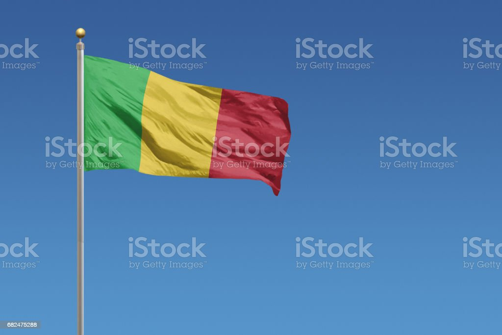 Flag of Mali royalty-free stock photo