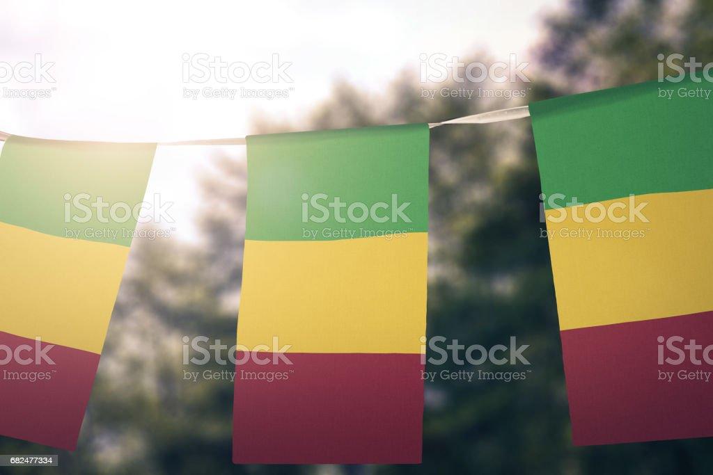 Flag of Mali foto de stock libre de derechos