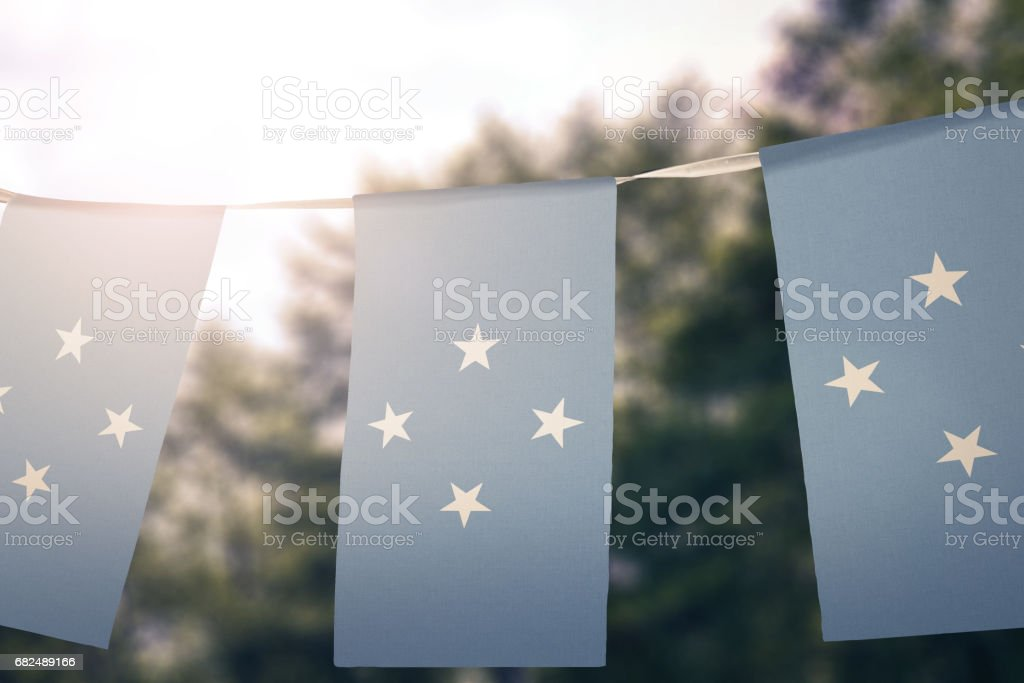 Flag of Micronesia foto de stock libre de derechos