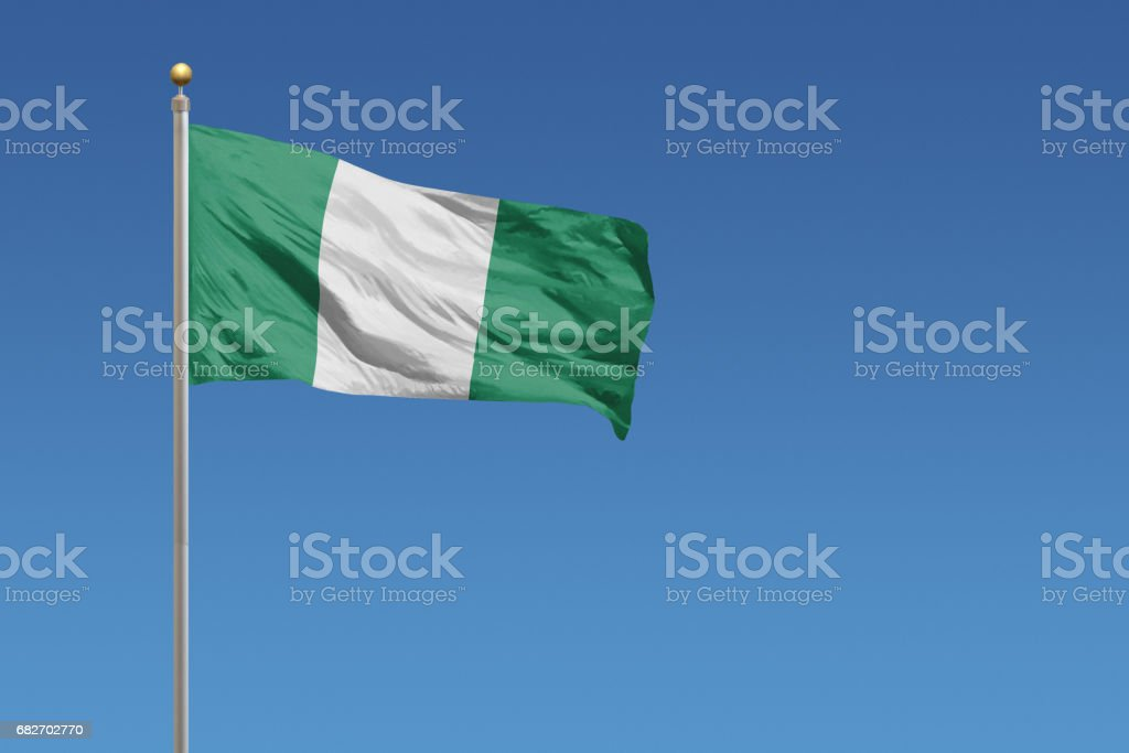 Flag of Nigeria - foto de stock