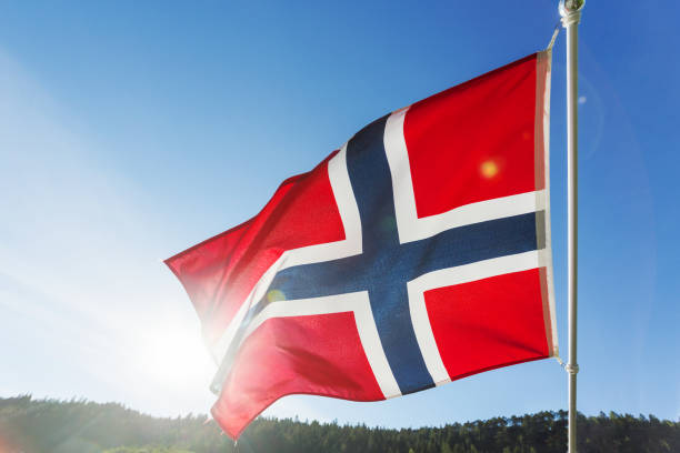flagge norwegen winken in den wind gegen sommer wald landschaft im sonnigen tag. - norwegen fahne stock-fotos und bilder