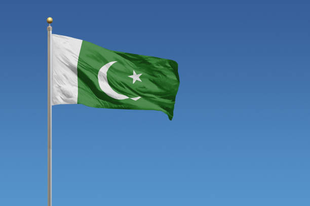 flag of pakistan - pakistani flag stock photos and pictures