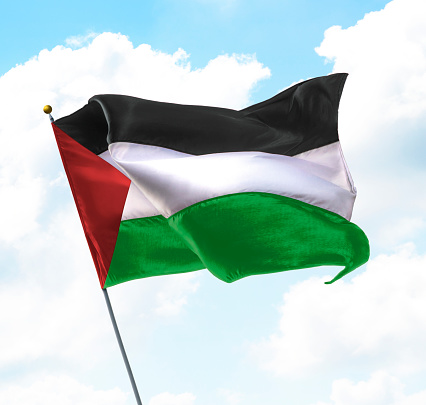 Flag of Palestine Raised Up in The Sky