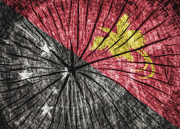 flag of papua new guinea - detachment stock pictures, royalty-free photos & images