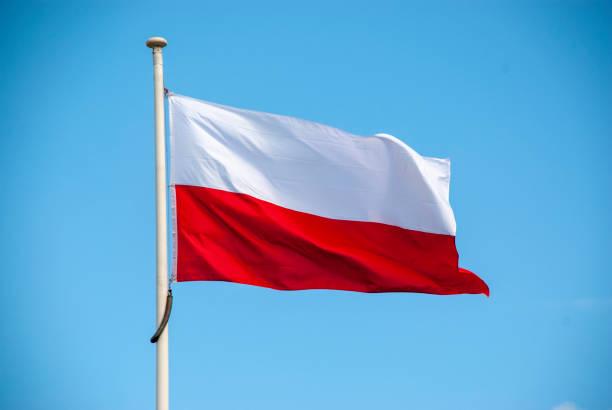 flag of poland - польша стоковые фото и изображения