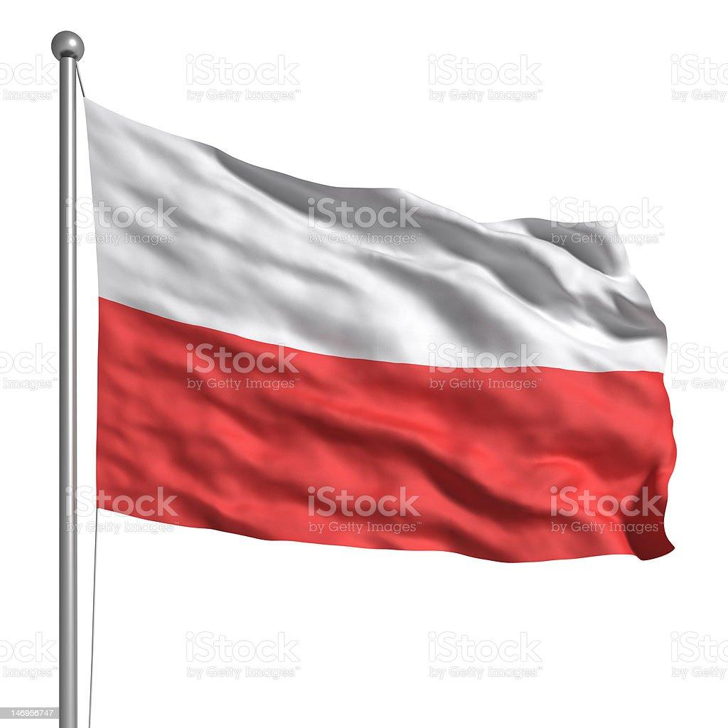 Flag of Poland (Isolated) stock photo