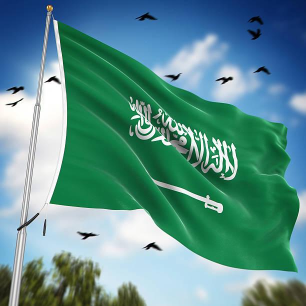 flaga arabii saudyjskiej - saudi national day zdjęcia i obrazy z banku zdjęć