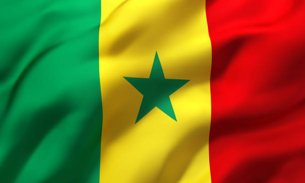 Image result for senegal flag