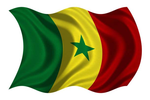 Bandeira do Senegal ondulado na textura de tecido branco, - foto de acervo