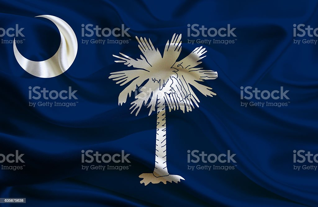 Flag of South Carolina stock photo