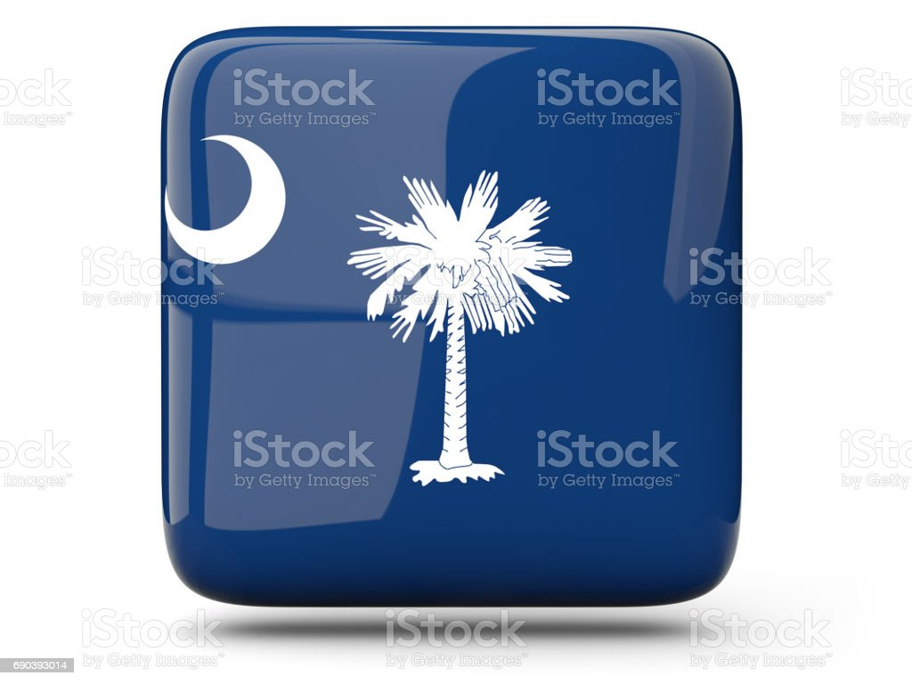 Flag of south carolina, US state square icon stock photo