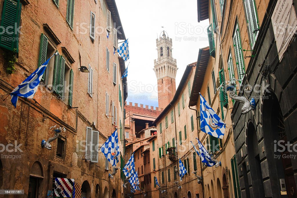 Flag of the Onda (Wave) in Contrada, Siena - Italy stock photo