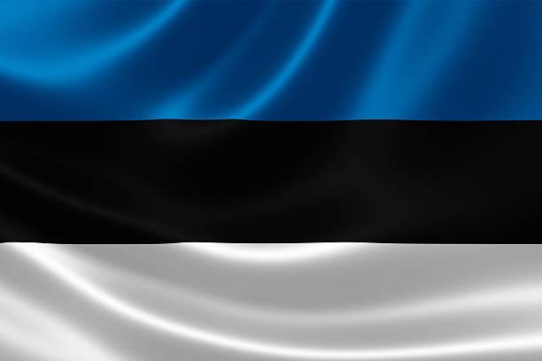 flag of the republic of estonia - estonya stok fotoğraflar ve resimler