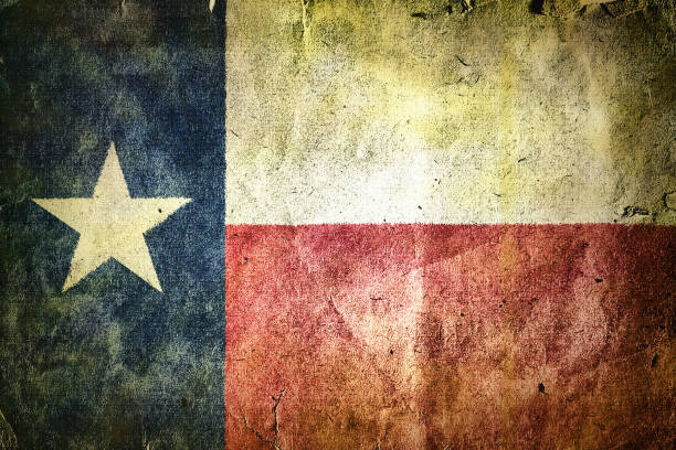 flag of the state of Texas. stock photo