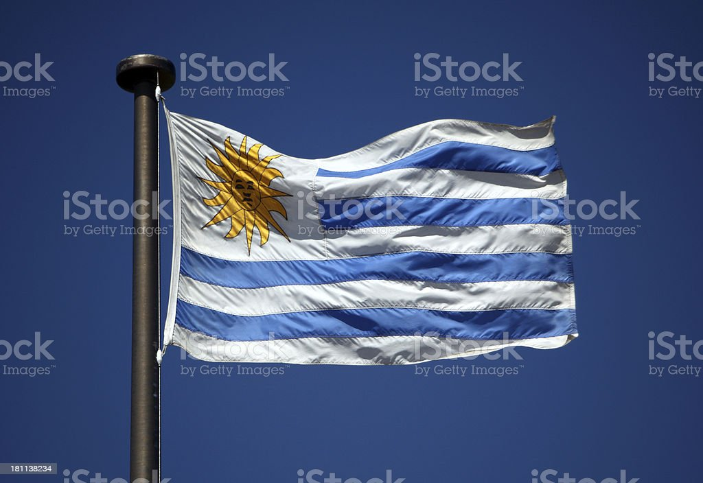 Flag of Uruguay royalty-free stock photo
