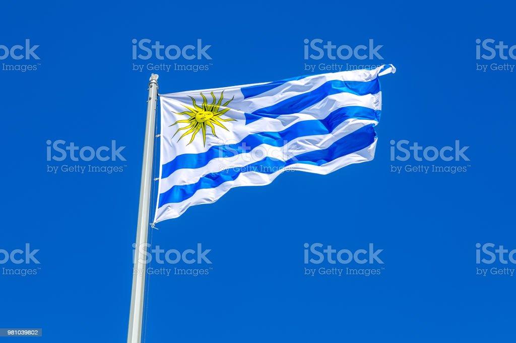 Bandera de Uruguay ondeando en el viento contra el cielo - foto de stock