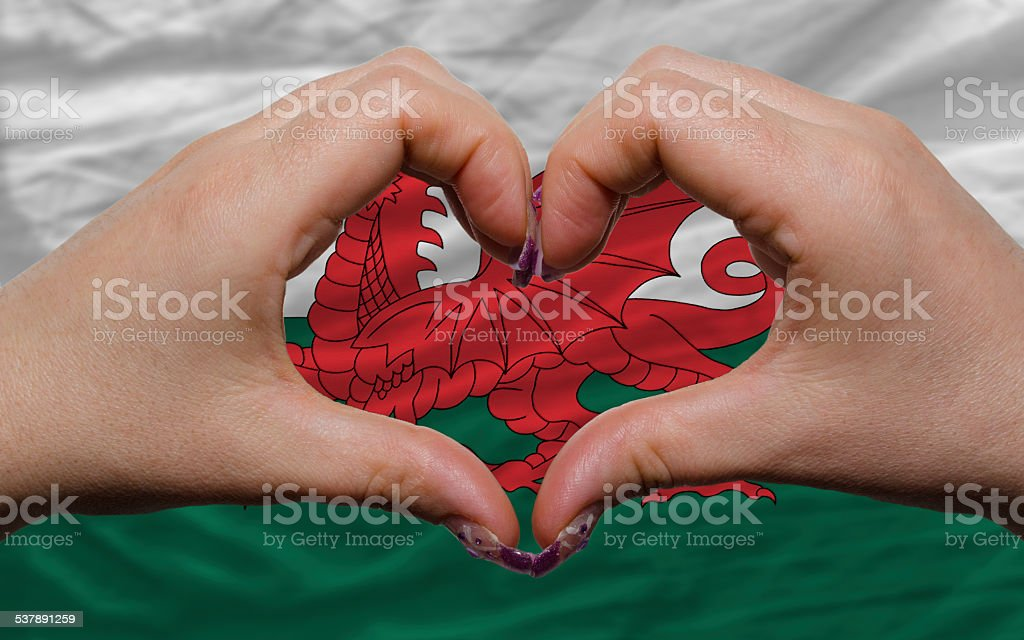 flag of wales showed heart and love gesture stock photo