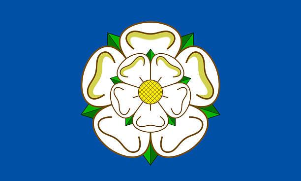 bandiera dello yorkshire - yorkshire meridionale foto e immagini stock