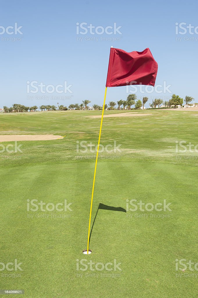 Flag on a golf course green royalty-free stock photo