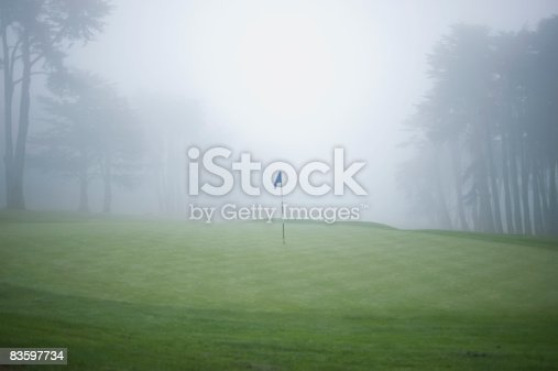 Flag on putting green on golf course, fog and trees in background
