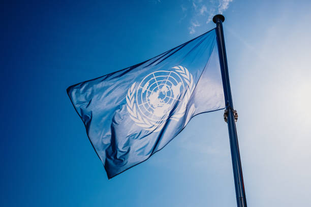 un flag waved against the sun and blue sky. - united nations стоковые фото и изображения