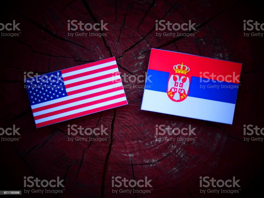 USA flag with Serbian flag on a tree stump isolated - fotografia de stock