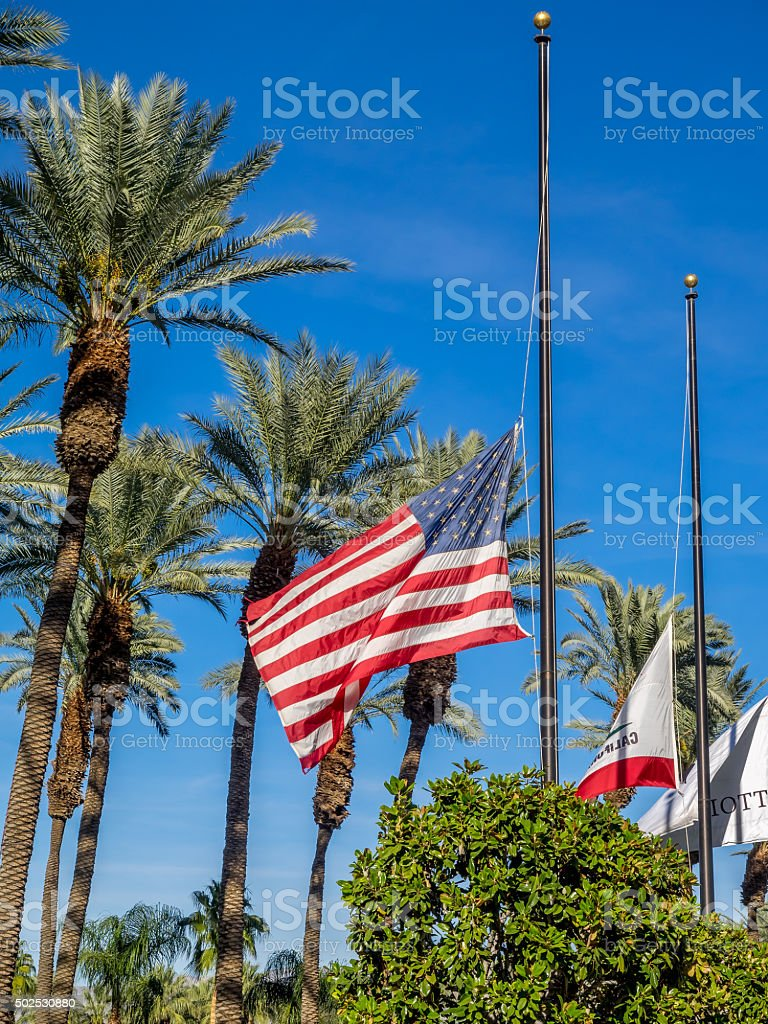 Flags at half-mast stock photo