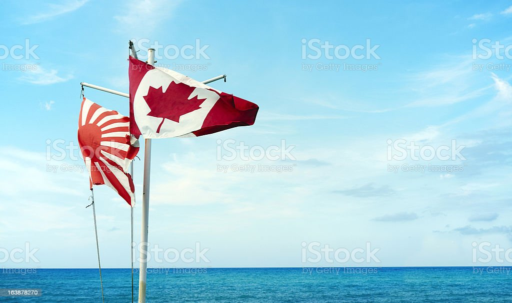 Flags. Color Image royalty-free stock photo