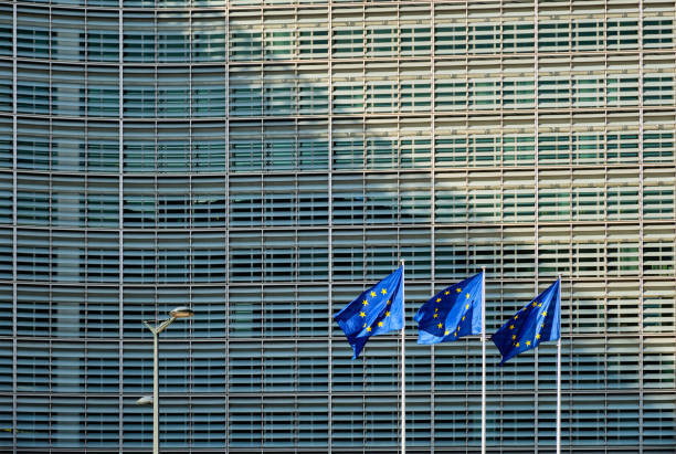 EU flags in front of European Commission European EU flags in front of the Berlaymont building, headquarters of the European commission in Brussels european commission stock pictures, royalty-free photos & images