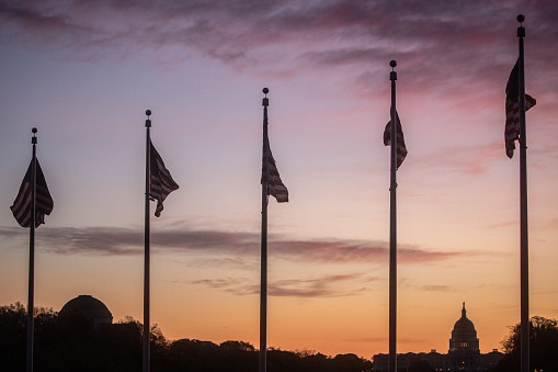 Flags in Washington D.C.