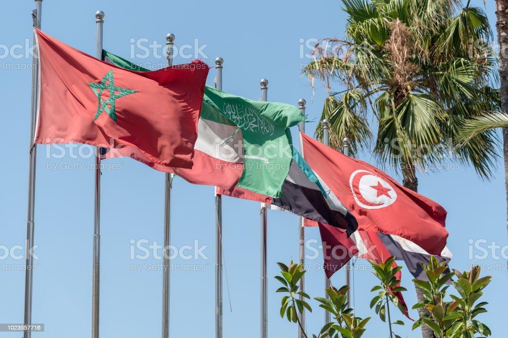 Banderas de MENA (Oriente Medio y África del norte) - foto de stock
