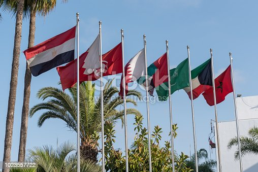 Flags of MENA (Middle East and North Africa on a series of flagpoles including national flags of Morocco, Kuwait, Saudi Arabia, United Arab Emirates, Qatar, Turkey, Bahrain and Egypt