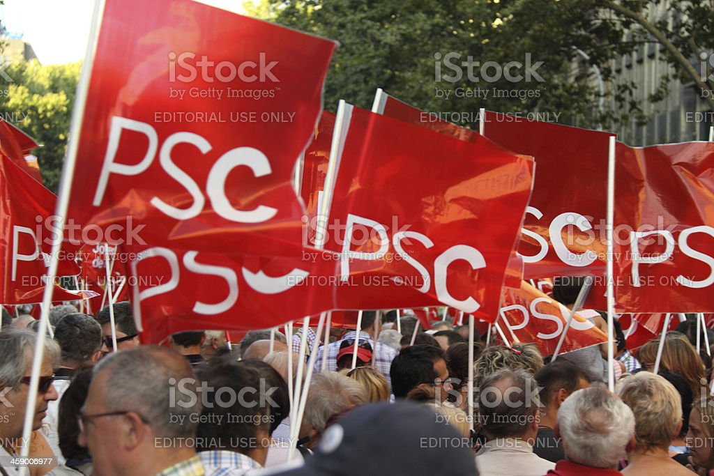 Flags of Socialist Party royalty-free stock photo